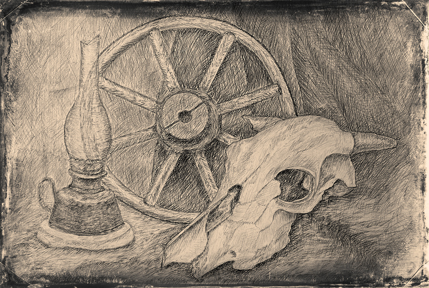 Still life pencil drawing