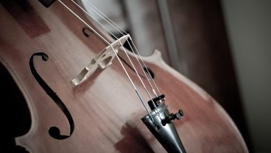 Photo of The Best Cellos – 2020 Buyers Guide